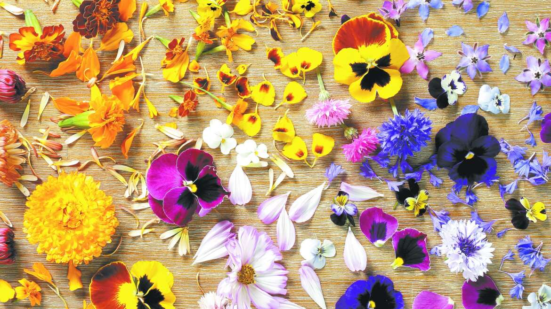 Βρώσιμα Λουλούδια