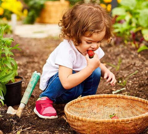 10 συμβουλές κηπουρικής για αρχάριους
